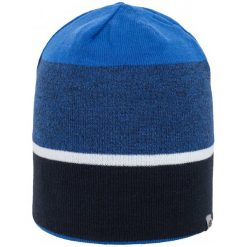 4F Męska Czapka H4Z17 cam004 Niebieski Melanż L-Xl. Niebieskie czapki zimowe męskie 4f, melanż, z elastanu, sportowe. W wyprzedaży za 24,00 zł.