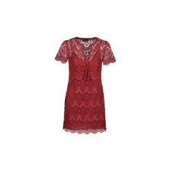 Sukienki krótkie Morgan  RPAPRI. Czerwone sukienki mini marki Morgan, z krótkim rękawem. Za 351,20 zł.