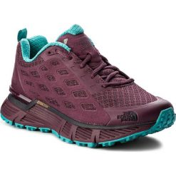 Buty sportowe damskie: Buty THE NORTH FACE - Endurus Tr T92VUUYQP Amaranth Purple/Vistula Blue