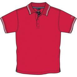 Koszulki polo: KILLTEC Koszulka polo męska  Cerreto czerwona r. M (22112)
