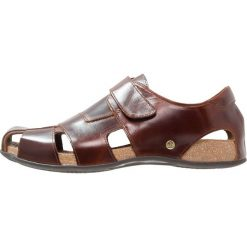 Sandały męskie: Panama Jack FLETCHER  Sandały trekkingowe brown