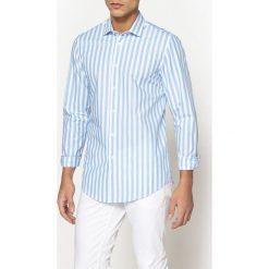 Koszule męskie: Koszula slim w paski 100% bawełna
