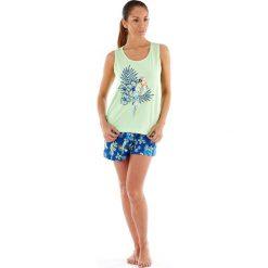 Piżamy damskie: Damska piżama bawełniana Parrot krótka