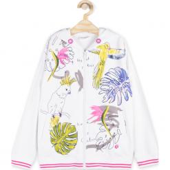 Odzież dziecięca: Bluza