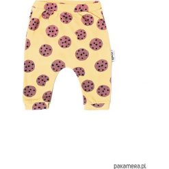 Spodnie niemowlęce: Spodnie cookies