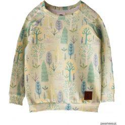 Bluzy dziewczęce rozpinane: Bluza TREE green
