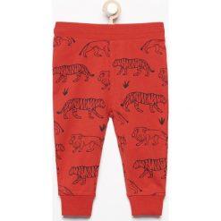 Spodnie dresowe z nadrukiem zwierząt - Czerwony. Czerwone chinosy chłopięce Reserved, z motywem zwierzęcym, z dresówki. W wyprzedaży za 14,99 zł.
