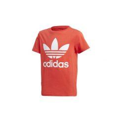 T-shirty z krótkim rękawem Dziecko  adidas  Koszulka Trefoil. Czerwone bluzki dziewczęce z krótkim rękawem Adidas. Za 99,95 zł.