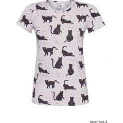 T-shirt Black cats. Szare t-shirty damskie marki BE, s, z nadrukiem, eleganckie, z klasycznym kołnierzykiem. Za 80,00 zł.