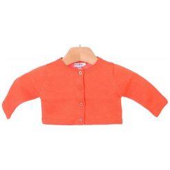 Odzież dziecięca: Primigi Sweter Dziewczęcy 62 Pomarańczowy