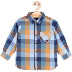 Koszula. Szare koszule chłopięce z długim rękawem marki SCENT, z bawełny. Za 44,90 zł.