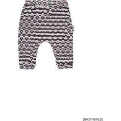 Spodnie niemowlęce: Spodnie cactus
