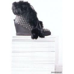 Botki typu sneakers. Szare botki damskie skórzane marki Pakamera, za kostkę, na koturnie. Za 349,00 zł.