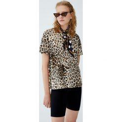 Koszulka w panterkę. Szare t-shirty damskie Pull&Bear, z motywem zwierzęcym. Za 29,90 zł.